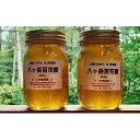 【ふるさと納税】八ヶ岳百花蜜 600g×2本セット 【蜂蜜・はちみつ・ハチミツ・加工品】