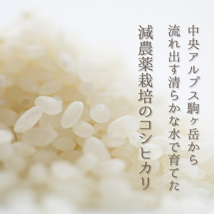 お米コスパ5位:減農薬栽培コシヒカリ30kg