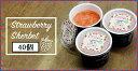 【ふるさと納税】バランスの良い美味しい高品質の「アルプスいちごシャーベット」40個