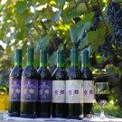 山ぶどうワイン2018&2017「紫輝」6本