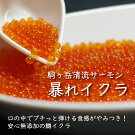 駒ヶ岳清流サーモン「暴れイクラ」300g