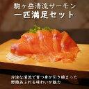 【ふるさと納税】駒ヶ岳清流サーモン1匹満足セット