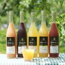 【ふるさと納税】信州産くだもの果汁100%ジュース500ml...