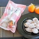 【ふるさと納税】南信州に伝わる伝統の味「市田柿」 500g×2袋 ※着日指定はできません。沖縄・離島への発送...