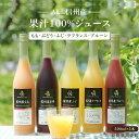 【ふるさと納税】長野・信州産 果汁100% くだものジュース...