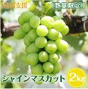 【ふるさと納税】≪特別支援≫[数量限定]皮ごと・種無しブドウ