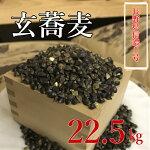 【ふるさと納税】玄蕎麦長野県産信濃1号大容量22.5kg!