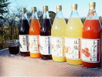 【ふるさと納税】2-A61果汁満喫バラエティー6本セット(KF11)