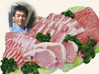 【ふるさと納税】2-A30南信州くりん豚バラエティセット
