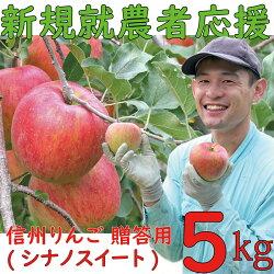麻績村産りんご(秋映)