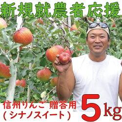 麻績村産りんご(シナノスイート)