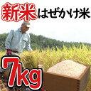 【ふるさと納税】 新米 はぜかけ米 予約 7kg 自然乾燥 ...