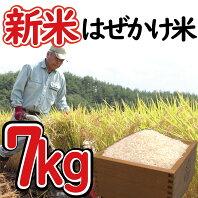 【ふるさと納税】 新米 はぜかけ米 予約 7kg 自然乾燥 天日乾燥 長野 麻績村 5kg + 2kg