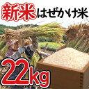 【ふるさと納税】 新米 はぜかけ米 予約 22kg 自然乾燥...