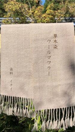 【ふるさと納税】長野県麻績村草木染のやさしい色合い草木染ウールマフラー(イチイ)