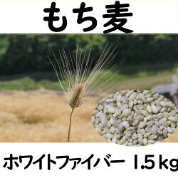 もち麦ホワイトファイバー