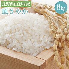 【ふるさと納税】1402長野県産米風さやか8kg(2020年産)