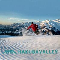 【ふるさと納税】C022-01HAKUBAVALLEY10スキー場共通1日券1枚
