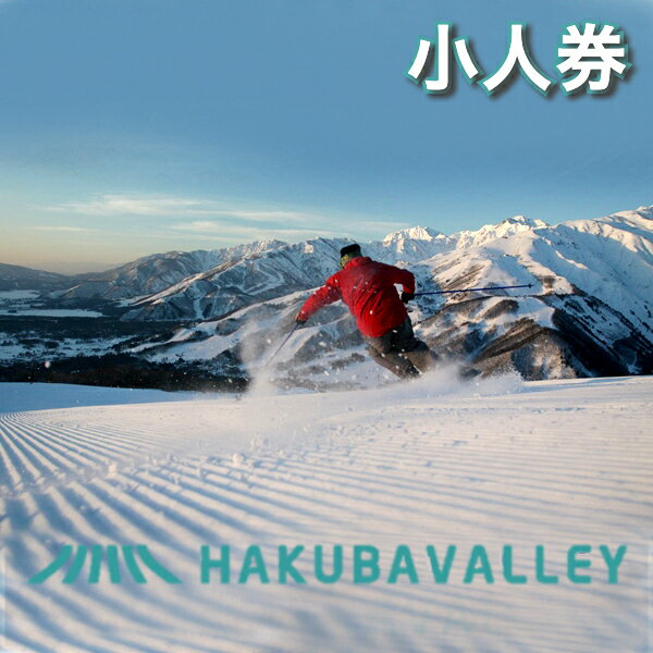 【ふるさと納税】HAKUBA VALLEY 栂池高原スキー場リフト1日券(大人)2枚
