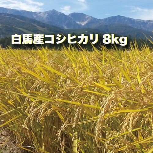 米・雑穀, 白米 B010-418kg
