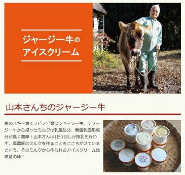 【ふるさと納税】ジャージー牛のアイスクリームセット