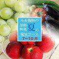 【3ヶ月頒布会】7・8・9月小布施町夏の味覚コース