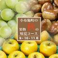 【3ヶ月頒布会】9・10・11月小布施町秋の味覚コース