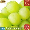 【ふるさと納税】シャインマスカット(約1kg)...
