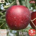【ふるさと納税】秋映(約5kg)...