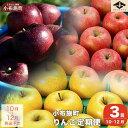 【ふるさと納税】3カ月頒布会 長野県りんごの味比べ(5kgず...