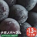 【ふるさと納税】 ナガノパープル(約1.5kg)...