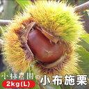 【ふるさと納税】小林農園の小布施栗 約2kg (L)