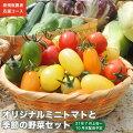 【ふるさと納税】新規就農者応援コースオリジナルミニトマトと季節の野菜セット