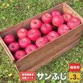 【ふるさと納税】新規就農者応援コースサンふじ(家庭用)約3kg