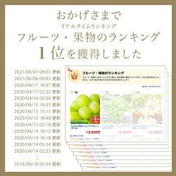 【ふるさと納税】シャインマスカット(約1kg) 画像1