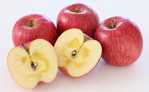 【ふるさと納税】サンふじ 秀品 約5kg(16玉入り) 【果物・フルーツ・林檎・リンゴ】 お届け:2019年12月上旬~中旬
