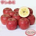 【ふるさと納税】志賀高原の麓で育った サンふじ 丸秀品 約5kg(18玉入り)りんご フルーツ ふじ 【果物類・林檎・りんご・リンゴ】 お届け:2021年12月上旬〜12月中旬