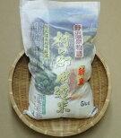 【ふるさと納税】K-2令和2年度産「村の御用達米」5kg