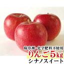 【ふるさと納税】【先行予約】 シナノスイート りんご 特秀 ...