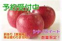 【ふるさと納税】【予約販売】シナノスイートりんご 家庭用10...