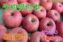 【ふるさと納税】サンふじりんご 家庭用10kg(サイズおまか...
