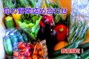 【ふるさと納税】【予約販売】太陽の野菜セット 長野県飯綱町産...