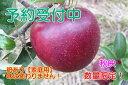 【ふるさと納税】【先行予約】秋映りんご 家庭用10kg(サイ...