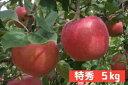【ふるさと納税】長野県 飯綱町 完熟蜜入り サンふじ りんご...