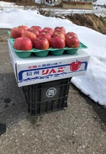 フルーツ・果物, りんご  5kg 201912