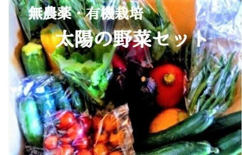 【ふるさと納税】[ 先行予約 ] 太陽の野菜セット ※沖縄および離島への配送不可 【 季節ごと旬の有機野菜 80サイズ段ボール1箱分】 無農薬 化学肥料 除草剤なし【 野菜 詰め合わせ 有機野菜 セット 信州 長野 飯綱町 】 発送:2021年6月〜11月頃
