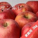 【ふるさと納税】[ 先行予約 ] 飯綱町 農家応援企画 【