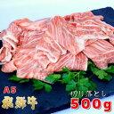 【ふるさと納税】A5飛騨牛 便利な切り落とし 500g
