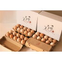 【ふるさと納税】特選 さくらたまご 40個(10個入×4パック) 新鮮な卵(発送当日・または前日に採れた卵)をお届けします