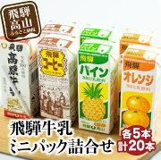 【ふるさと納税】飛騨デザートギフト(20個入)a524